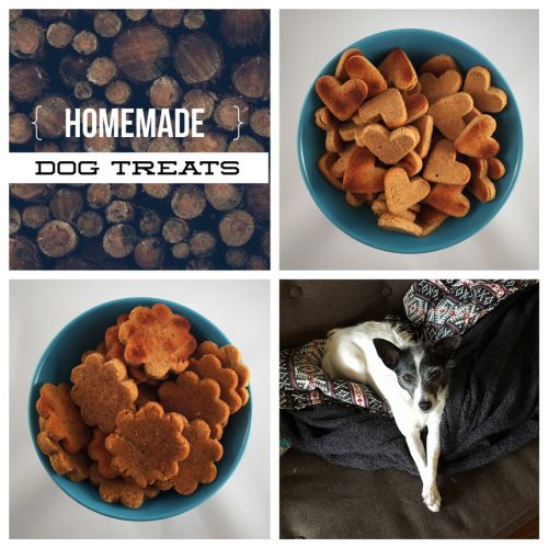 Recipe: Peanut Butter Dog Treats