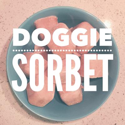 Doggie Sorbet
